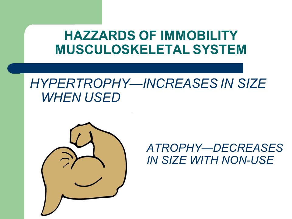 HAZZARDS OF IMMOBILITY MUSCULOSKELETAL SYSTEM HYPERTROPHY—INCREASES IN SIZE WHEN USED ATROPHY—DECREASES IN SIZE WITH NON-USE
