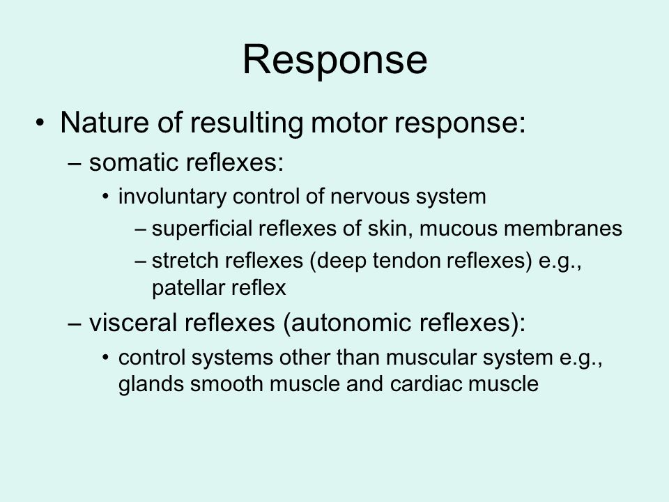 Response Nature of resulting motor response: –somatic reflexes: involuntary control of nervous system –superficial reflexes of skin, mucous membranes