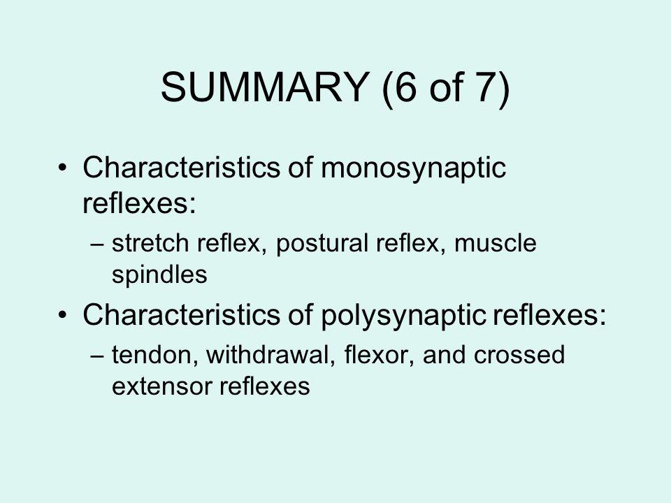 SUMMARY (6 of 7) Characteristics of monosynaptic reflexes: –stretch reflex, postural reflex, muscle spindles Characteristics of polysynaptic reflexes: