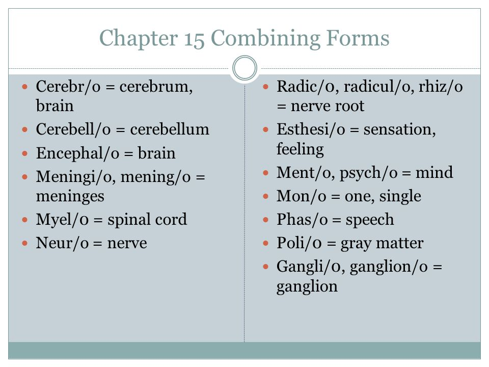 Chapter 15 Combining Forms Cerebr/o = cerebrum, brain Cerebell/o = cerebellum Encephal/o = brain Meningi/o, mening/o = meninges Myel/0 = spinal cord Neur/o = nerve Radic/0, radicul/o, rhiz/o = nerve root Esthesi/o = sensation, feeling Ment/o, psych/o = mind Mon/o = one, single Phas/o = speech Poli/0 = gray matter Gangli/0, ganglion/o = ganglion