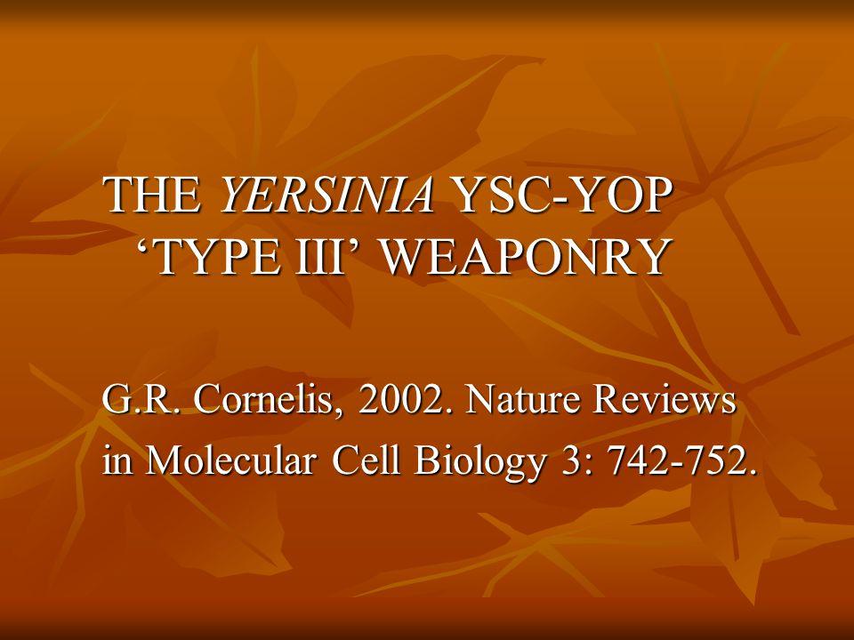 THE YERSINIA YSC-YOP 'TYPE III' WEAPONRY G.R. Cornelis, 2002.
