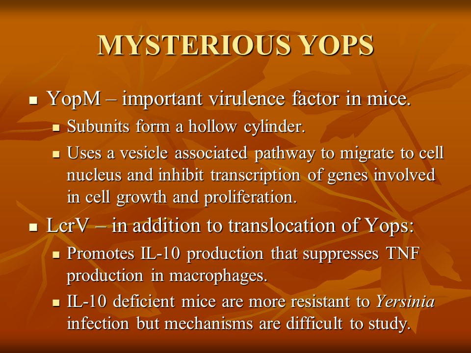 MYSTERIOUS YOPS YopM – important virulence factor in mice.