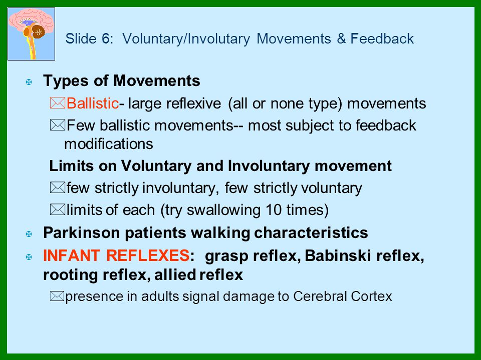 Slide 6: Voluntary/Involutary Movements & Feedback X Types of Movements *Ballistic- large reflexive (all or none type) movements *Few ballistic movements-- most subject to feedback modifications Limits on Voluntary and Involuntary movement *few strictly involuntary, few strictly voluntary *limits of each (try swallowing 10 times) X Parkinson patients walking characteristics X INFANT REFLEXES: grasp reflex, Babinski reflex, rooting reflex, allied reflex *presence in adults signal damage to Cerebral Cortex