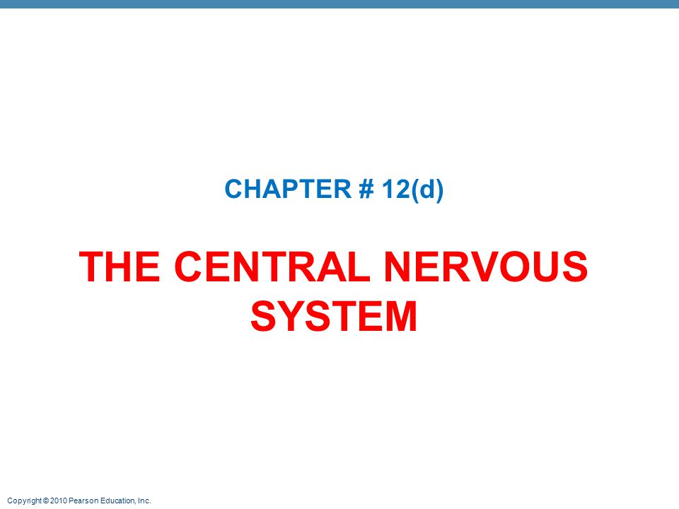 Copyright © 2010 Pearson Education, Inc. THE CENTRAL NERVOUS SYSTEM CHAPTER # 12(d)