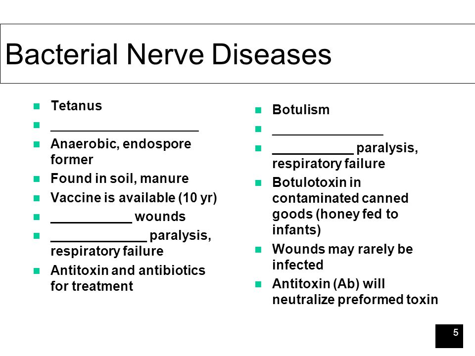 5 Bacterial Nerve Diseases Tetanus ____________________ Anaerobic, endospore former Found in soil, manure Vaccine is available (10 yr) ___________ wou