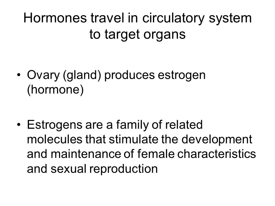 Hormones travel in circulatory system to target organs Ovary (gland) produces estrogen (hormone) Estrogens are a family of related molecules that stim