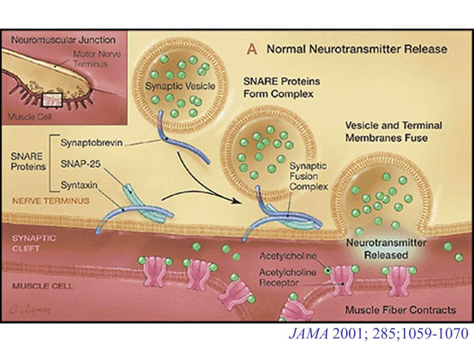 JAMA 2001; 285;1059-1070