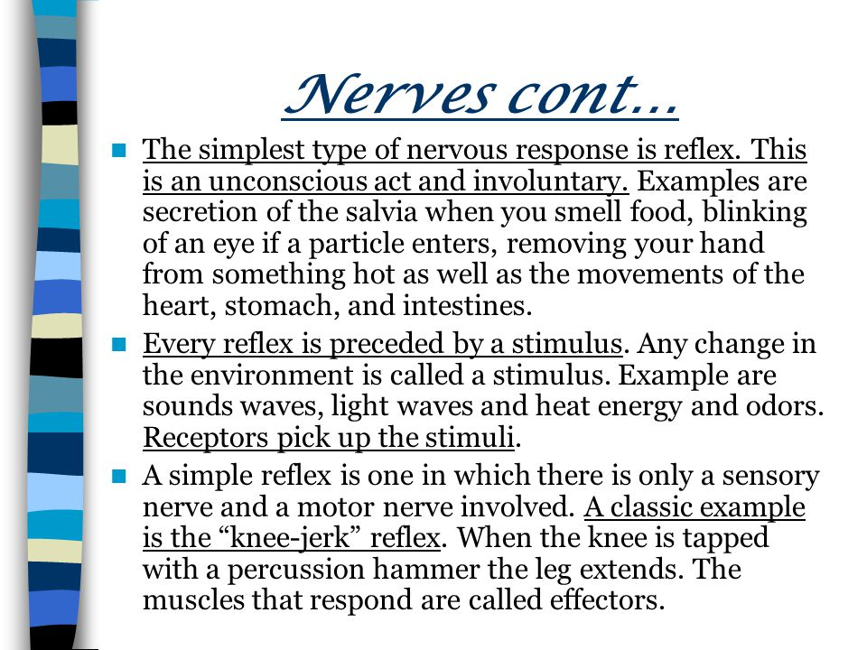 Nerves cont… The simplest type of nervous response is reflex.