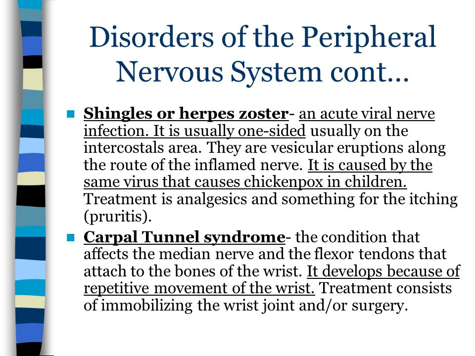 Disorders of the Peripheral Nervous System cont… Shingles or herpes zoster- an acute viral nerve infection.