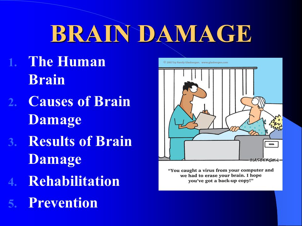 BRAIN DAMAGE 1. The Human Brain 2. Causes of Brain Damage 3.