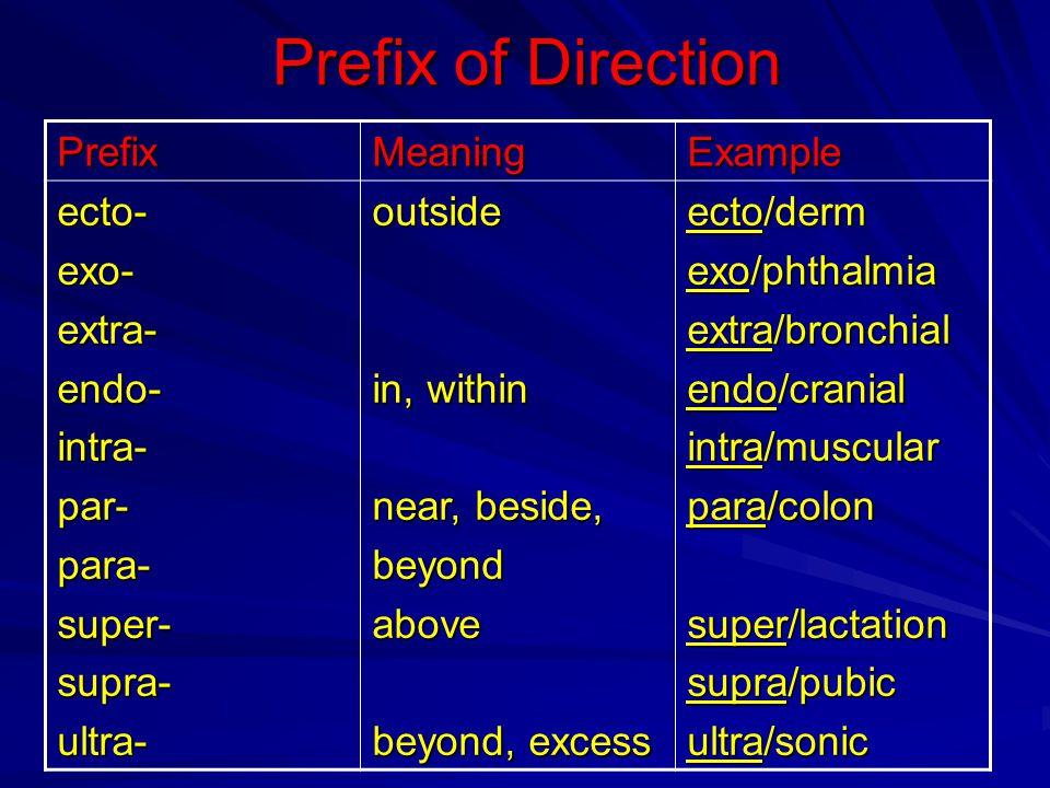 Prefix of Direction ExampleMeaningPrefix ecto/derm exo/phthalmia extra/bronchial endo/cranial intra/muscular para/colon super/lactation supra/pubic ul