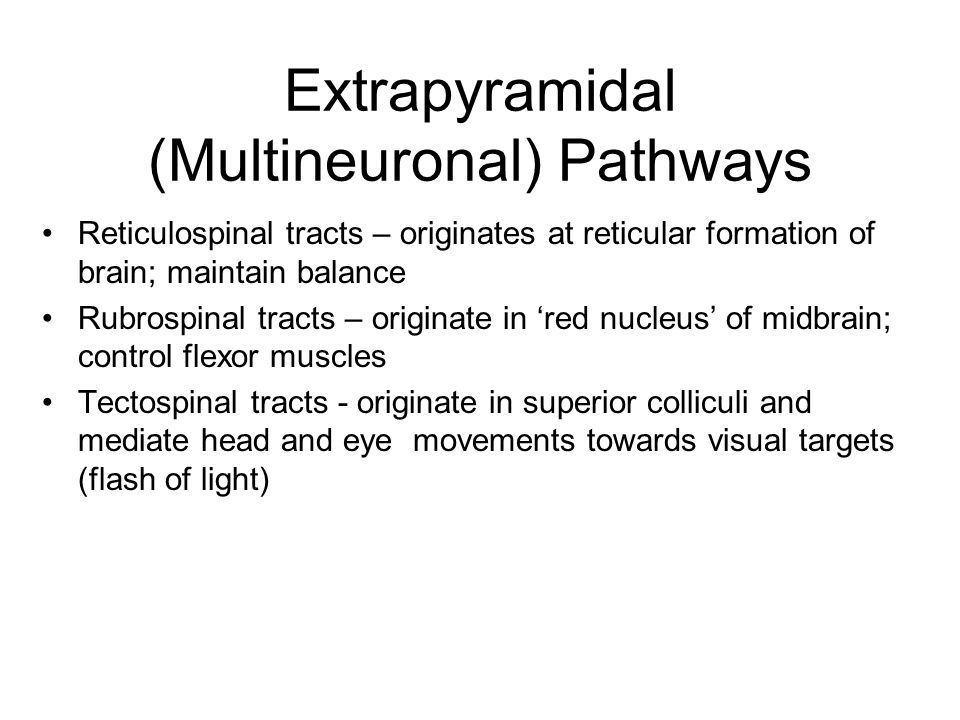 Extrapyramidal (Multineuronal) Pathways Reticulospinal tracts – originates at reticular formation of brain; maintain balance Rubrospinal tracts – orig