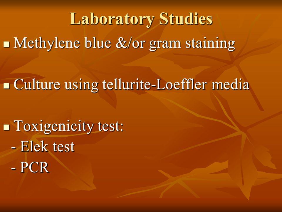 Laboratory Studies Methylene blue &/or gram staining Methylene blue &/or gram staining Culture using tellurite-Loeffler media Culture using tellurite-