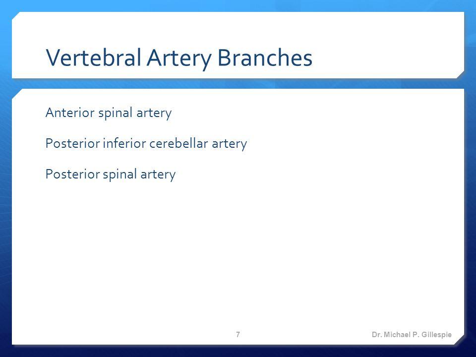 Basilar Artery Branches  Anterior inferior cerebellar artery  Labyrinthine (internal Auditory) artery  Pontine arteries  Superior cerebellar artery  Posterior cerebral arteries Dr.