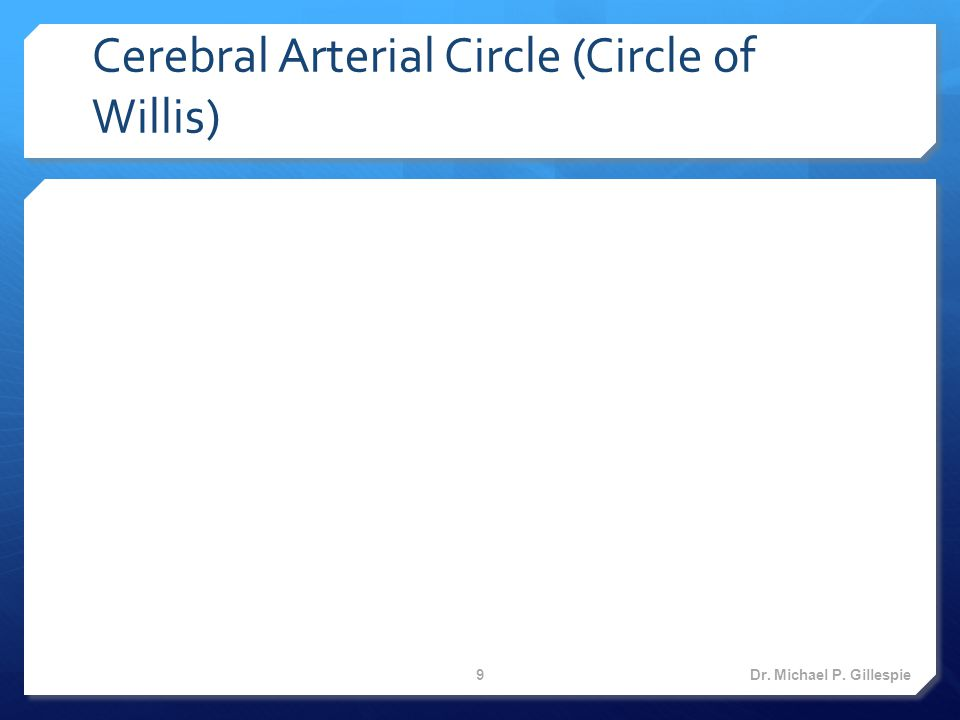 Spinal Cord Veins  Anteromedian spinal vein  Anterolateral spinal veins  Posteromedian spinal vein  Posterolateral spinal veins Dr.