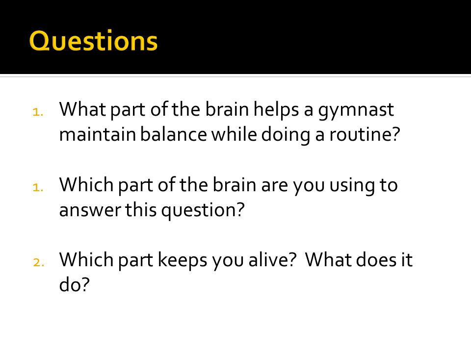 1. What part of the brain helps a gymnast maintain balance while doing a routine.