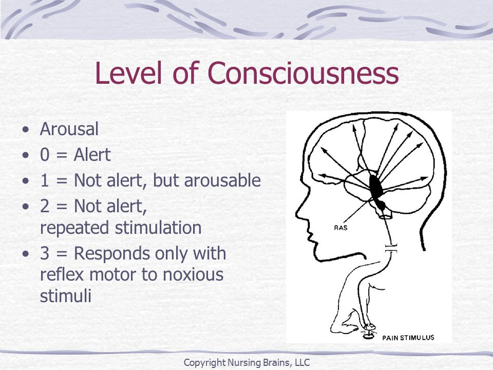 Level of Consciousness Arousal 0 = Alert 1 = Not alert, but arousable 2 = Not alert, repeated stimulation 3 = Responds only with reflex motor to noxious stimuli Copyright Nursing Brains, LLC