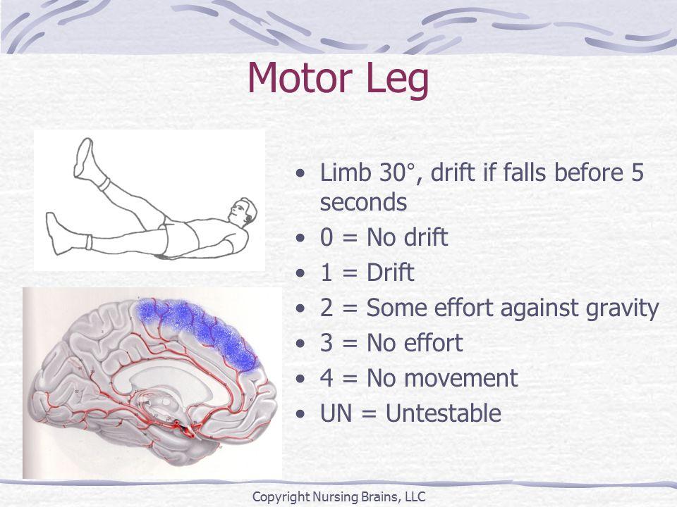 Motor Leg Limb 30°, drift if falls before 5 seconds 0 = No drift 1 = Drift 2 = Some effort against gravity 3 = No effort 4 = No movement UN = Untestab