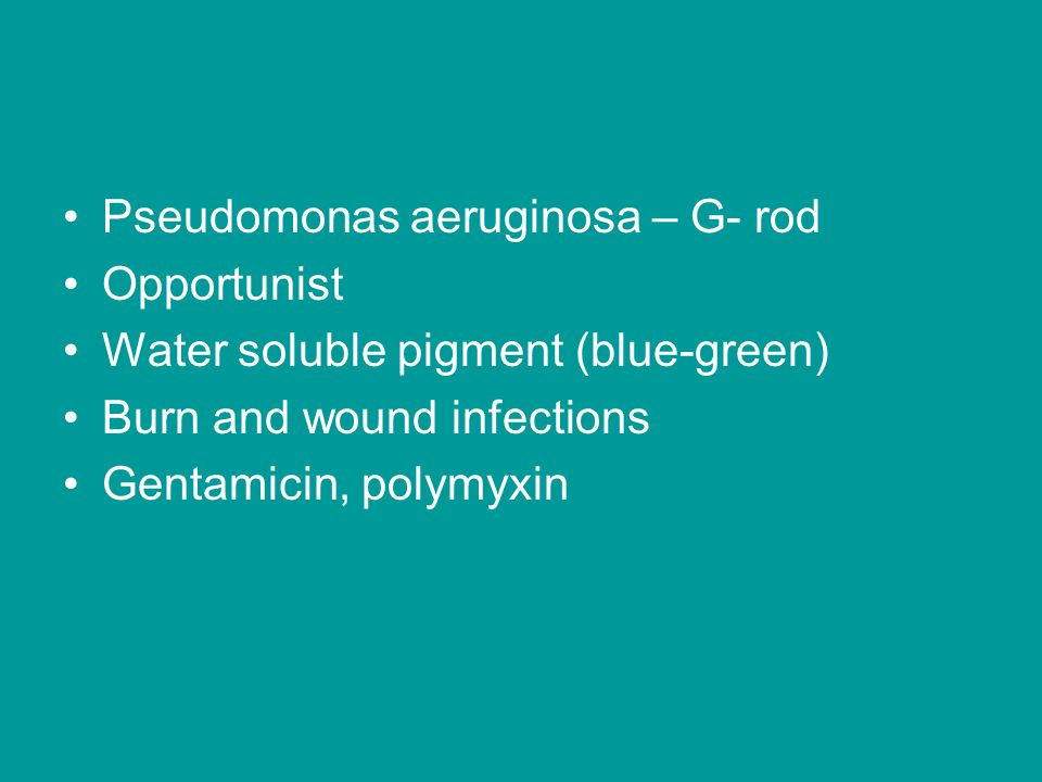 Pseudomonas aeruginosa – G- rod Opportunist Water soluble pigment (blue-green) Burn and wound infections Gentamicin, polymyxin