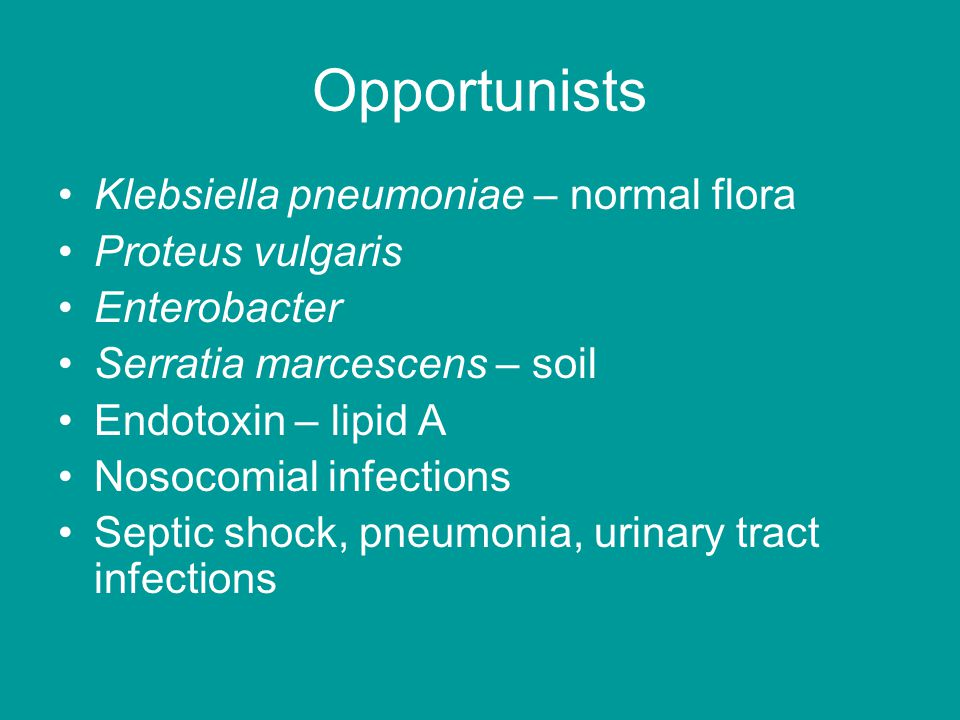 Opportunists Klebsiella pneumoniae – normal flora Proteus vulgaris Enterobacter Serratia marcescens – soil Endotoxin – lipid A Nosocomial infections Septic shock, pneumonia, urinary tract infections