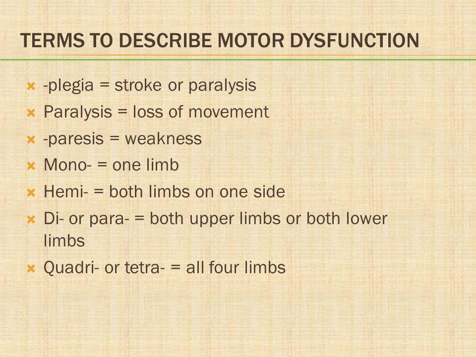 TERMS TO DESCRIBE MOTOR DYSFUNCTION  -plegia = stroke or paralysis  Paralysis = loss of movement  -paresis = weakness  Mono- = one limb  Hemi- =