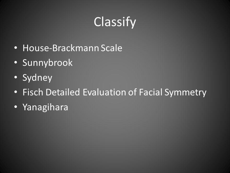 Classify House-Brackmann Scale Sunnybrook Sydney Fisch Detailed Evaluation of Facial Symmetry Yanagihara