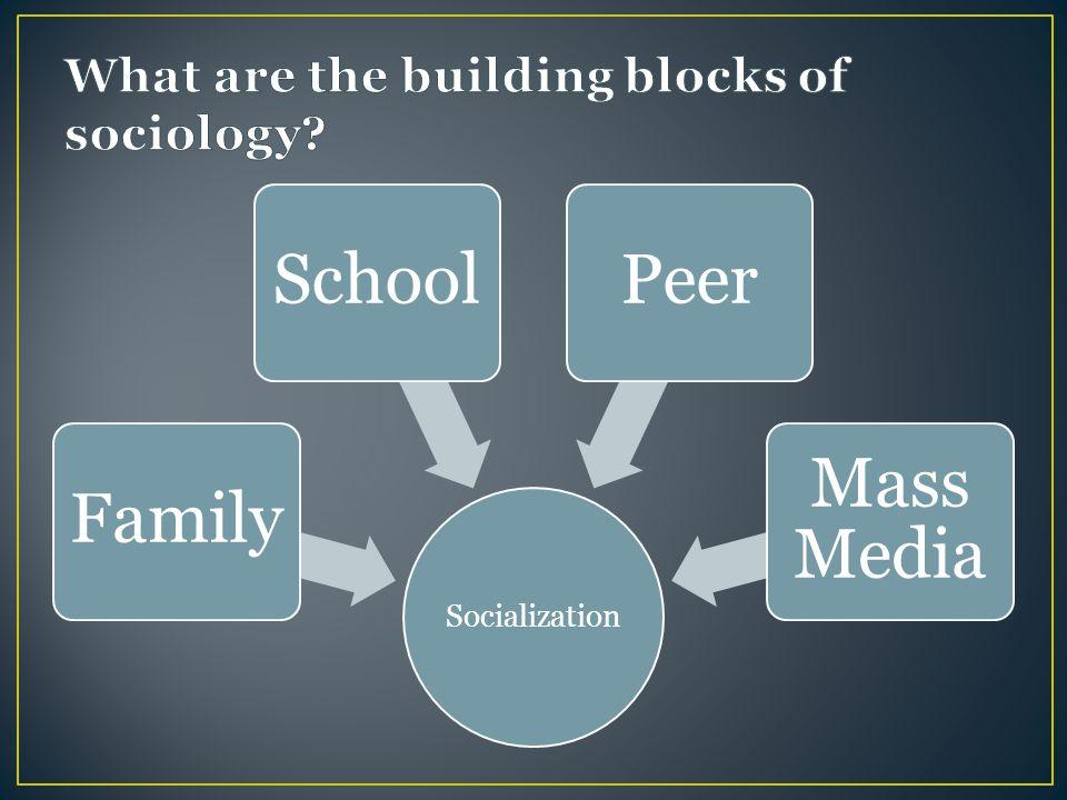 Socialization FamilySchoolPeer Mass Media