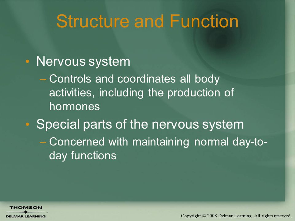 Copyright © 2008 Delmar Learning. All rights reserved. Structure and Function Nervous system –Controls and coordinates all body activities, including