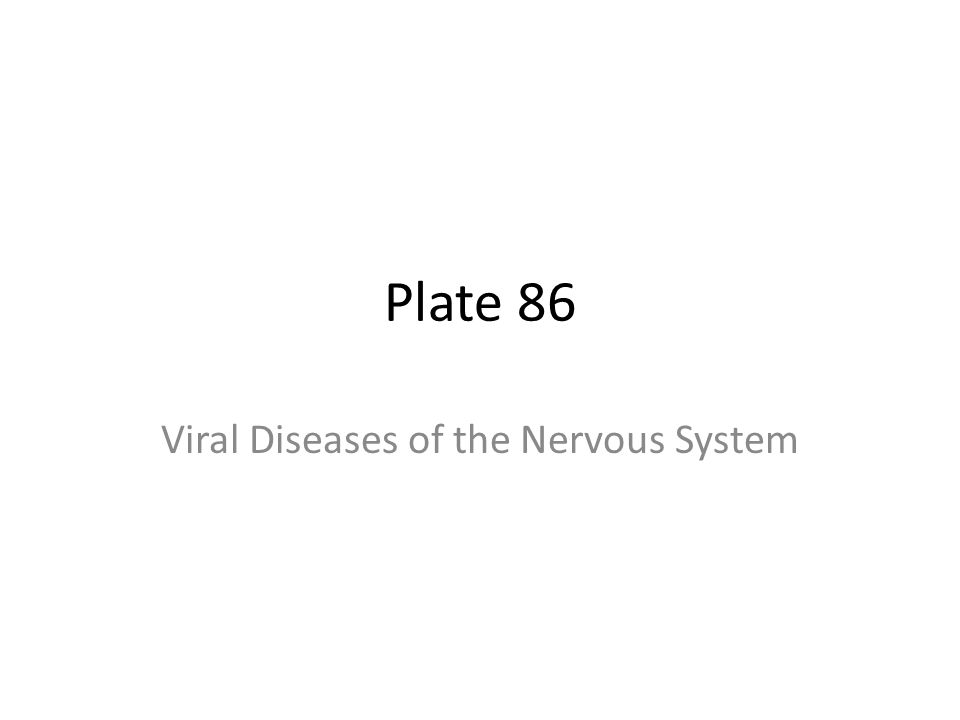 Plate 86 Viral Diseases of the Nervous System