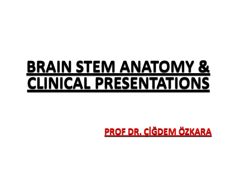 PROF DR. ÇİĞDEM ÖZKARA BRAIN STEM ANATOMY & CLINICAL PRESENTATIONS