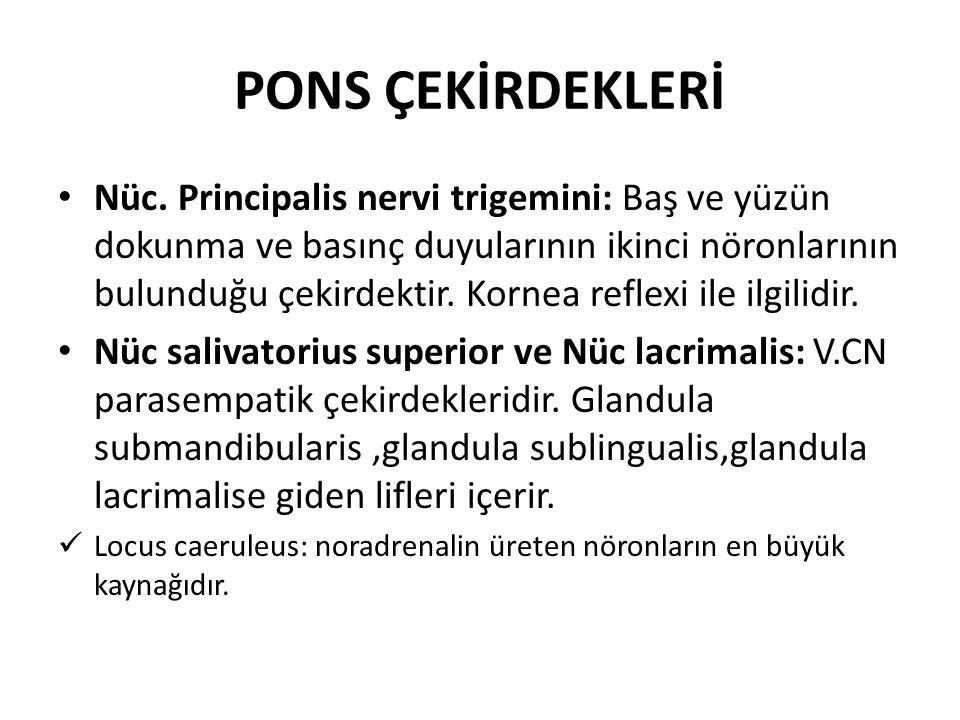 PONS ÇEKİRDEKLERİ Nüc.