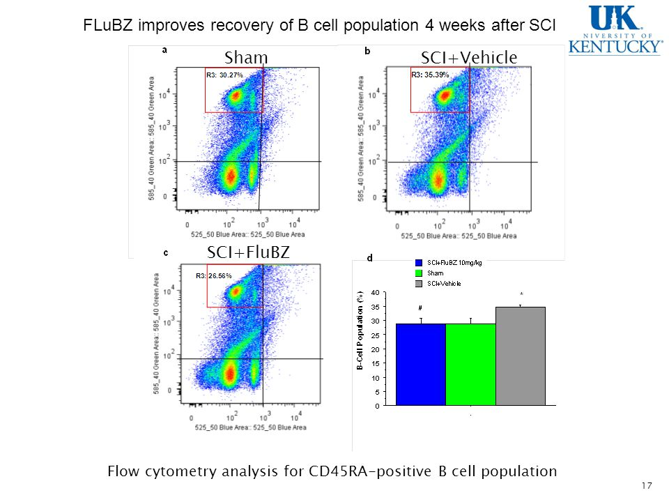 17 FLuBZ improves recovery of B cell population 4 weeks after SCI Sham SCI+FluBZ SCI+Vehicle Flow cytometry analysis for CD45RA-positive B cell population