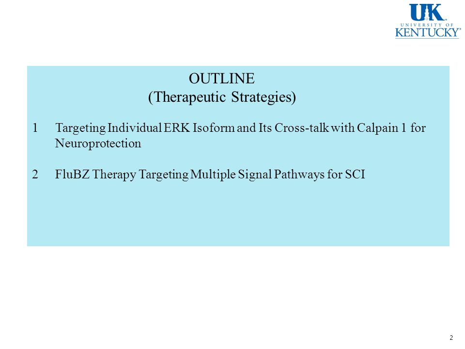 OUTLINE (Therapeutic Strategies) 1Targeting Individual ERK Isoform and Its Cross-talk with Calpain 1 for Neuroprotection 2FluBZ Therapy Targeting Multiple Signal Pathways for SCI 2