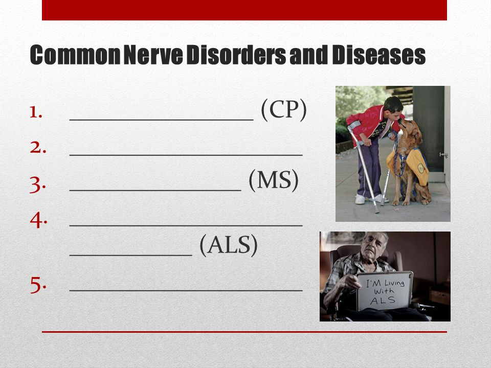 Common Nerve Disorders and Diseases 1._______________ (CP) 2.___________________ 3.______________ (MS) 4.___________________ __________ (ALS) 5.___________________