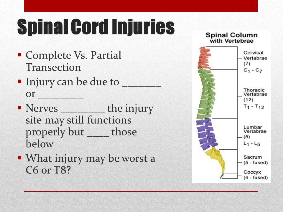 Spinal Cord Injuries  Complete Vs. Partial Transection  Injury can be due to _______ or ________  Nerves ________ the injury site may still functio