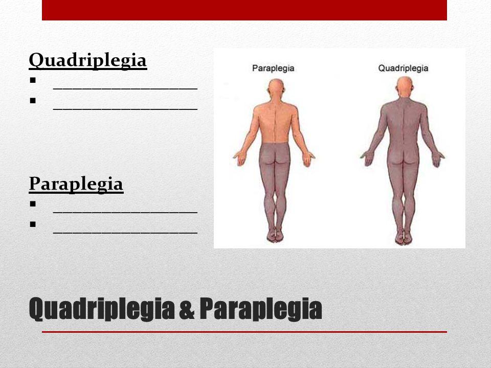 Quadriplegia & Paraplegia Quadriplegia  _______________ Paraplegia  _______________