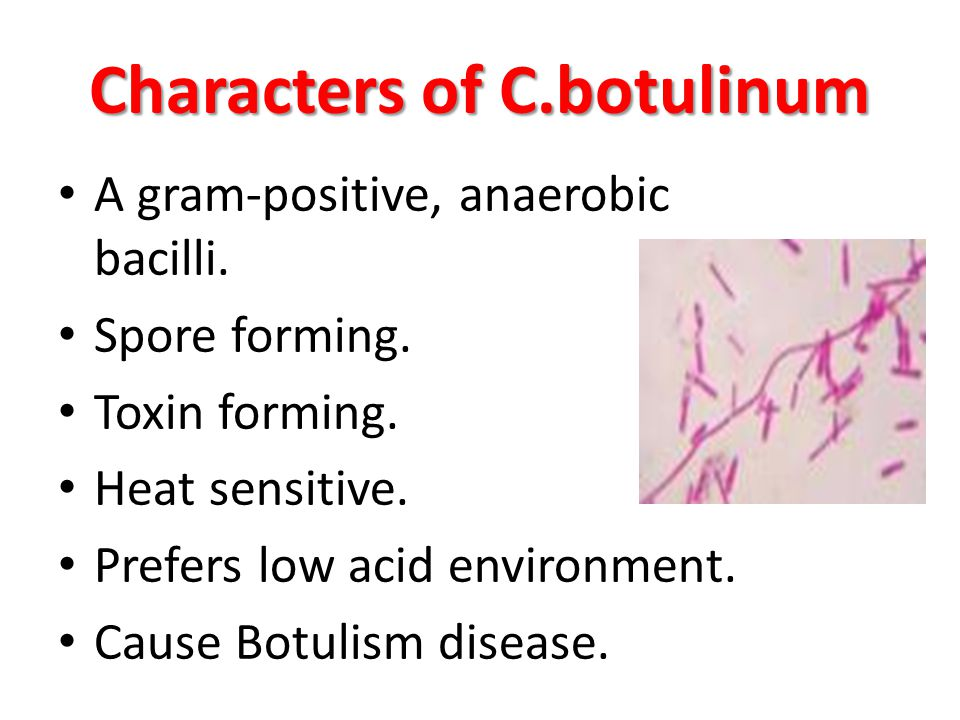 Characters of C.botulinum A gram-positive, anaerobic bacilli. Spore forming. Toxin forming. Heat sensitive. Prefers low acid environment. Cause Botuli