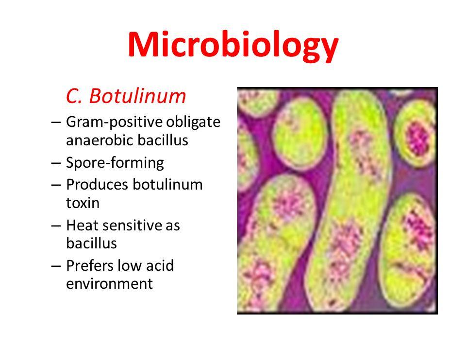Microbiology C.