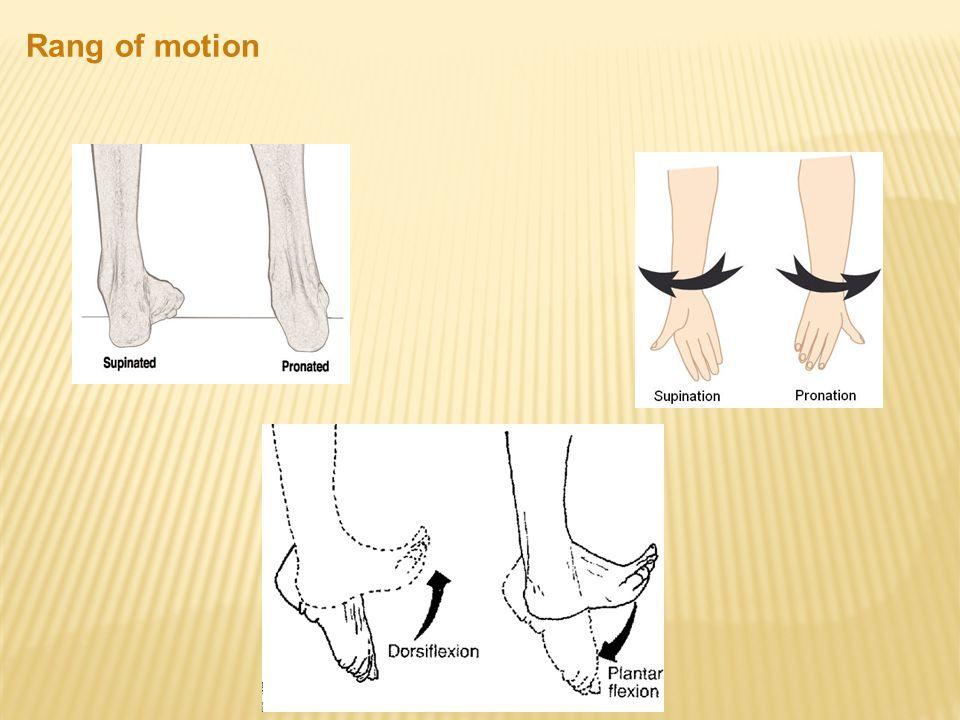 Rang of motion