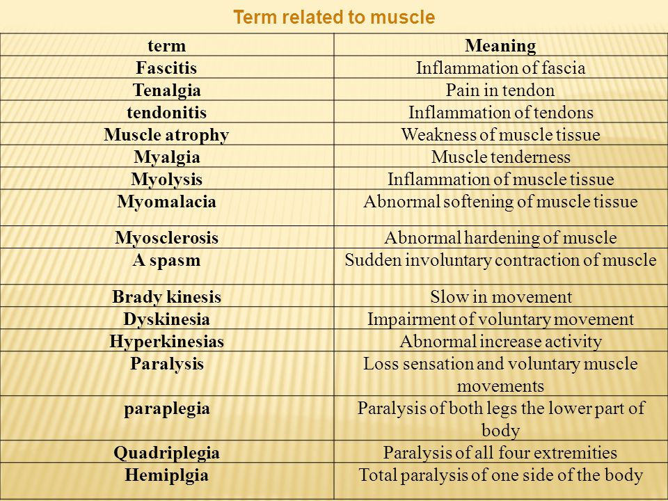 Term related to muscle termMeaning FascitisInflammation of fascia TenalgiaPain in tendon tendonitisInflammation of tendons Muscle atrophyWeakness of muscle tissue MyalgiaMuscle tenderness MyolysisInflammation of muscle tissue MyomalaciaAbnormal softening of muscle tissue MyosclerosisAbnormal hardening of muscle A spasmSudden involuntary contraction of muscle Brady kinesisSlow in movement DyskinesiaImpairment of voluntary movement HyperkinesiasAbnormal increase activity ParalysisLoss sensation and voluntary muscle movements paraplegiaParalysis of both legs the lower part of body QuadriplegiaParalysis of all four extremities HemiplgiaTotal paralysis of one side of the body