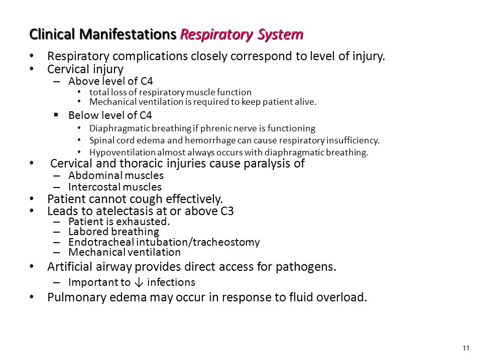 Clinical Manifestations Respiratory System Respiratory complications closely correspond to level of injury.