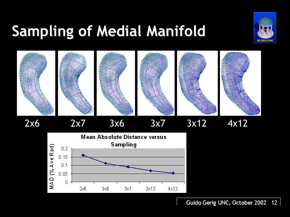 Guido Gerig UNC, October 2002 12 Sampling of Medial Manifold 2x62x73x63x73x124x12