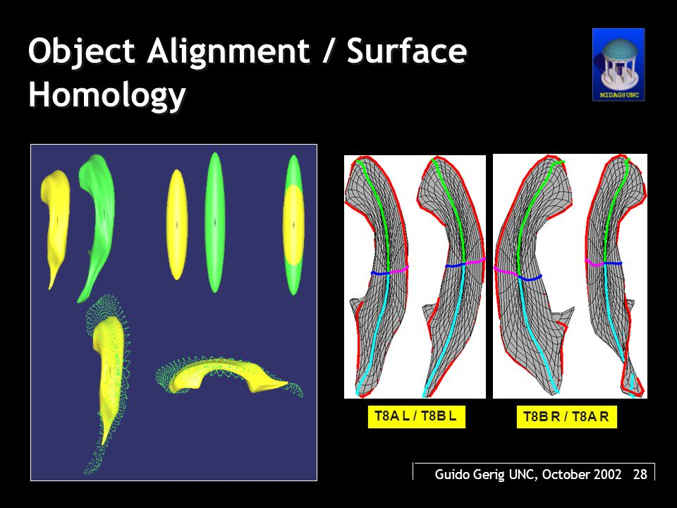 Guido Gerig UNC, October 2002 28 Object Alignment / Surface Homology T8A L / T8B L T8B R / T8A R