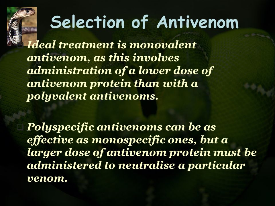 Selection of Antivenom  Ideal treatment is monovalent antivenom, as this involves administration of a lower dose of antivenom protein than with a pol