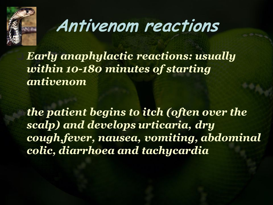 Antivenom reactions  Early anaphylactic reactions: usually within 10-180 minutes of starting antivenom  the patient begins to itch (often over the s