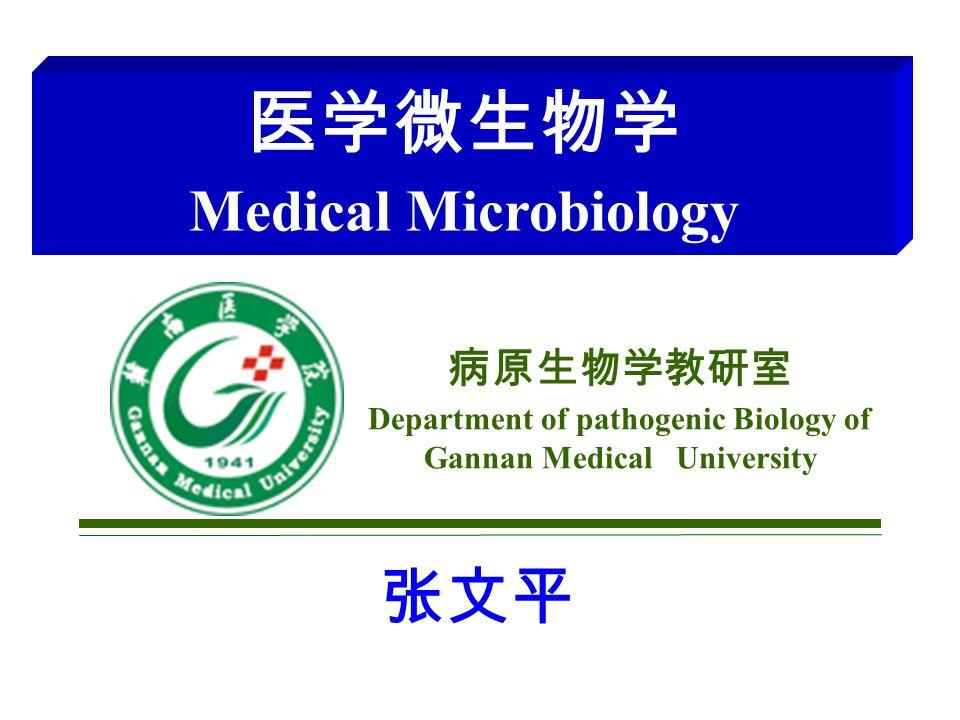 病原生物学教研室 Department of pathogenic Biology of Gannan Medical University 医学微生物学 Medical Microbiology 张文平