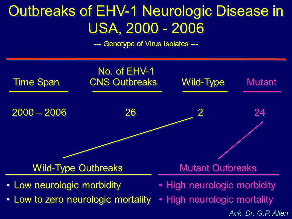 Outbreaks of EHV-1 Neurologic Disease in USA, 2000 - 2006 --- Genotype of Virus Isolates --- Outbreaks of EHV-1 Neurologic Disease in USA, 2000 - 2006