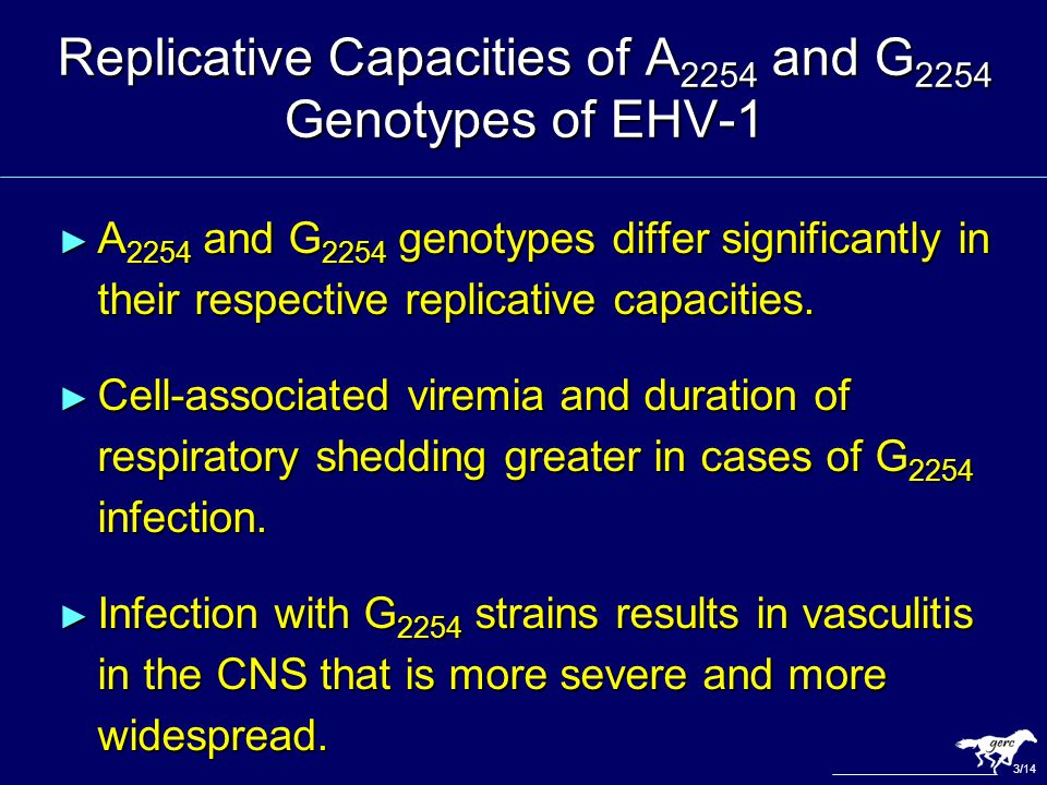 Replicative Capacities of A 2254 and G 2254 Genotypes of EHV-1 ► A 2254 and G 2254 genotypes differ significantly in their respective replicative capa