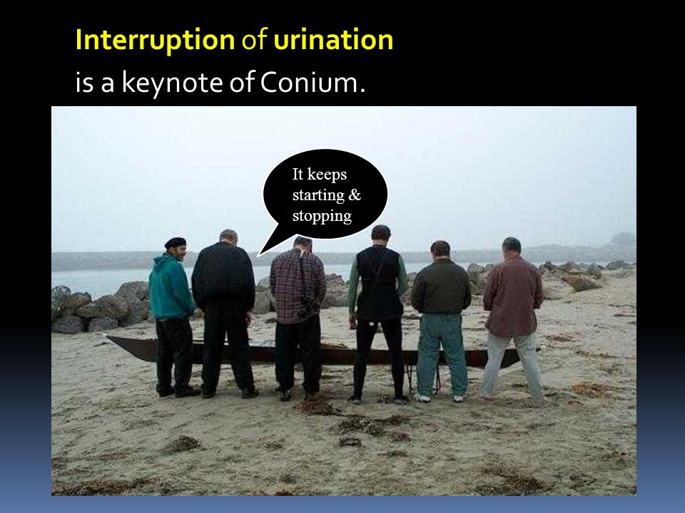 Interruption of urination is a keynote of Conium. It keeps starting & stopping
