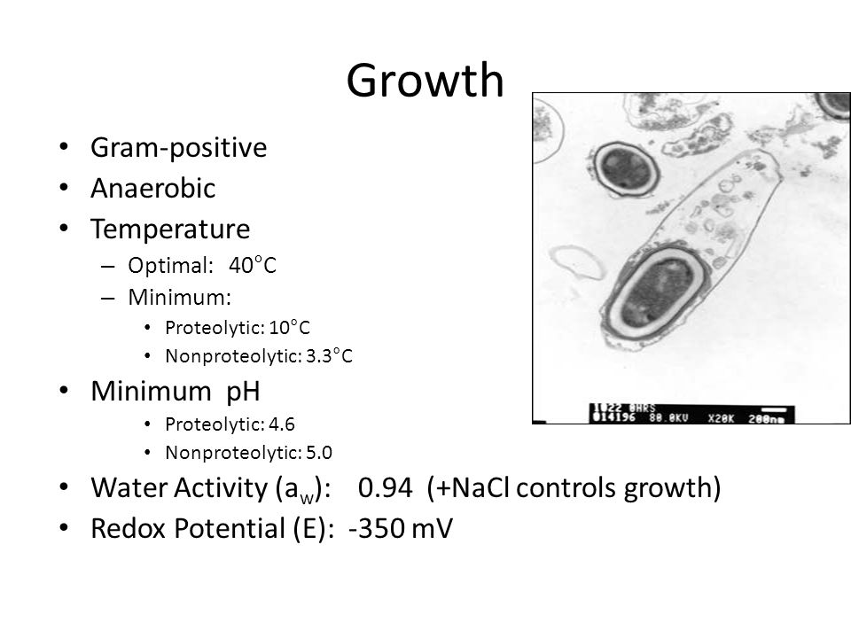 Growth Gram-positive Anaerobic Temperature – Optimal:40°C – Minimum: Proteolytic: 10°C Nonproteolytic: 3.3°C Minimum pH Proteolytic: 4.6 Nonproteolytic: 5.0 Water Activity (a w ): 0.94 (+NaCl controls growth) Redox Potential (E): -350 mV